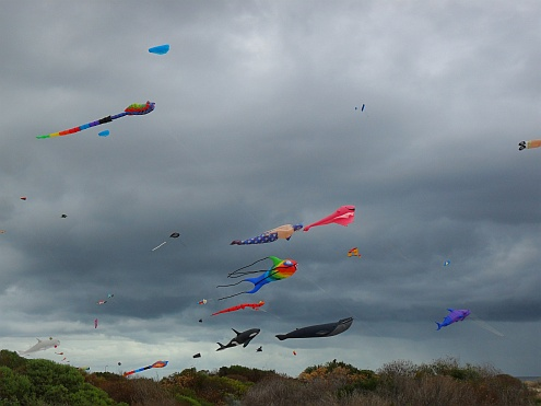 Adelaide Kite Festival 2013 - some of the