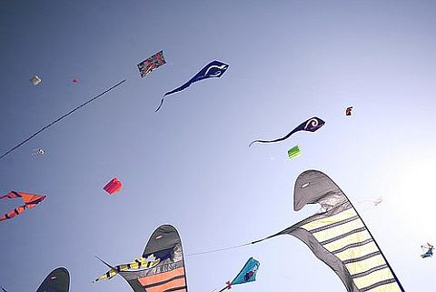 In the U.S.A. - this is the DC Kite Festival.