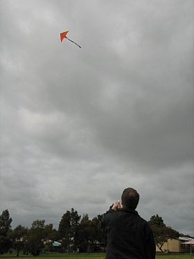 The 2-Skewer Delta flying on a cloudy day.