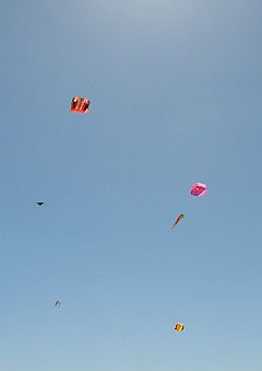 Some festival kites flying at near 400 feet altitude