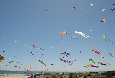 Side-on shot showing a cloud of many different kinds of kites in the air at once