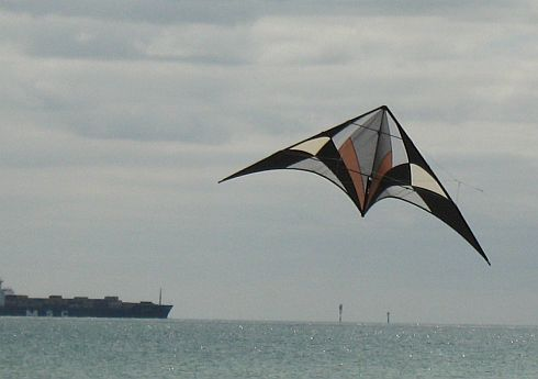 A large 2-line sport kite with the sea as the background