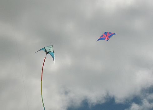 Two different types of Deltas: a sport kite with tubular tail and a single liner