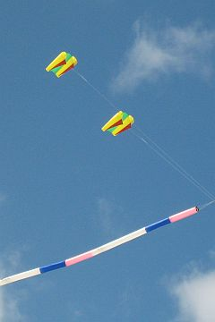 Colorful twin Sled kites with ram-air spars