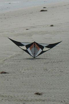 A large black and white sport kite balancing on its nose, on the sand