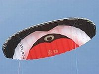 A Cobra Montana kite in flight.