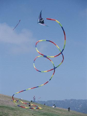 Delta stunt kite with tubular tail