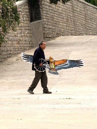 A bird kite in China