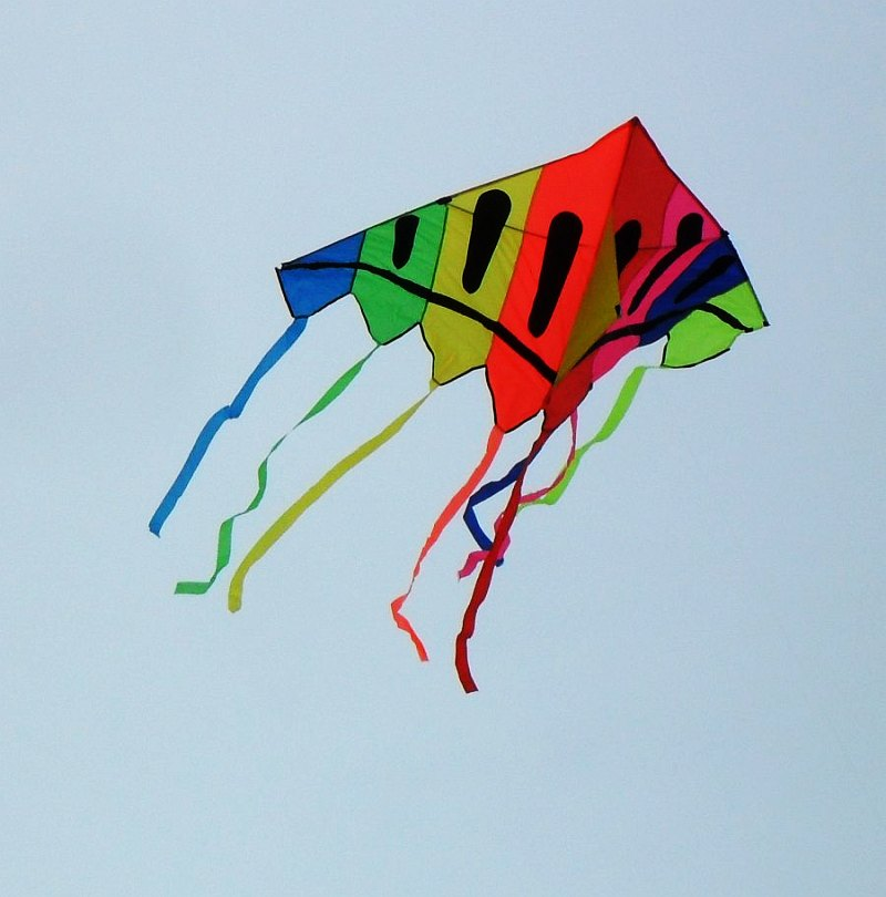 Eye-catching kids' delta kite.