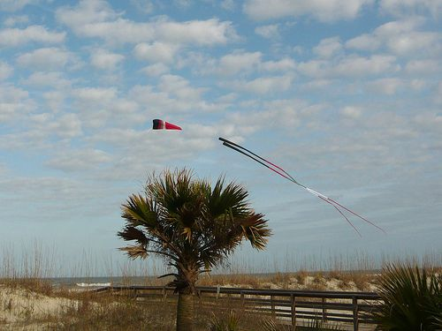 Subtle horizontals and verticals around this Flowform kite.