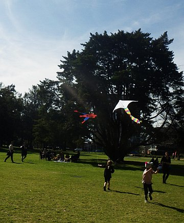 Spider-man and a delta being towed - popular kids' kites.