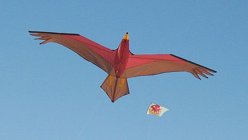 A highly realistic 3D Bird kite in flight over the sand at Semaphore beach