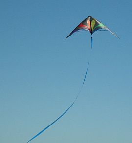 Delta stunt kite with a very long tubular tail.