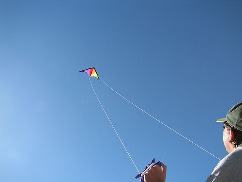 Most people learn kite stunts on a dual-line Delta like this one.
