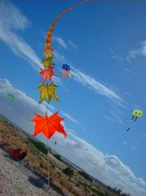 Taiwanese kite train.