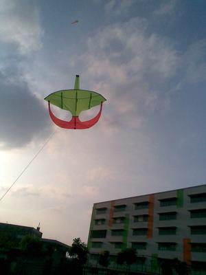 Moon Kite Flying 2
