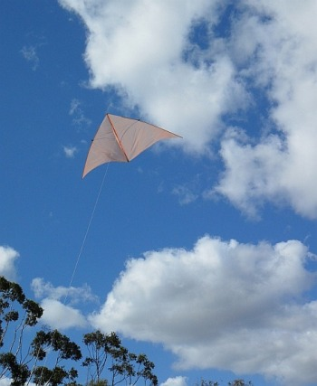 The MBK Dowel Delta kite in flight.