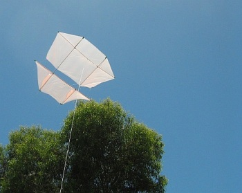 The MBK Dowel Dopero kite in flight.