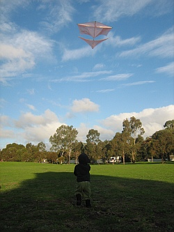 It's rewarding to make your own kite, like this Roller!