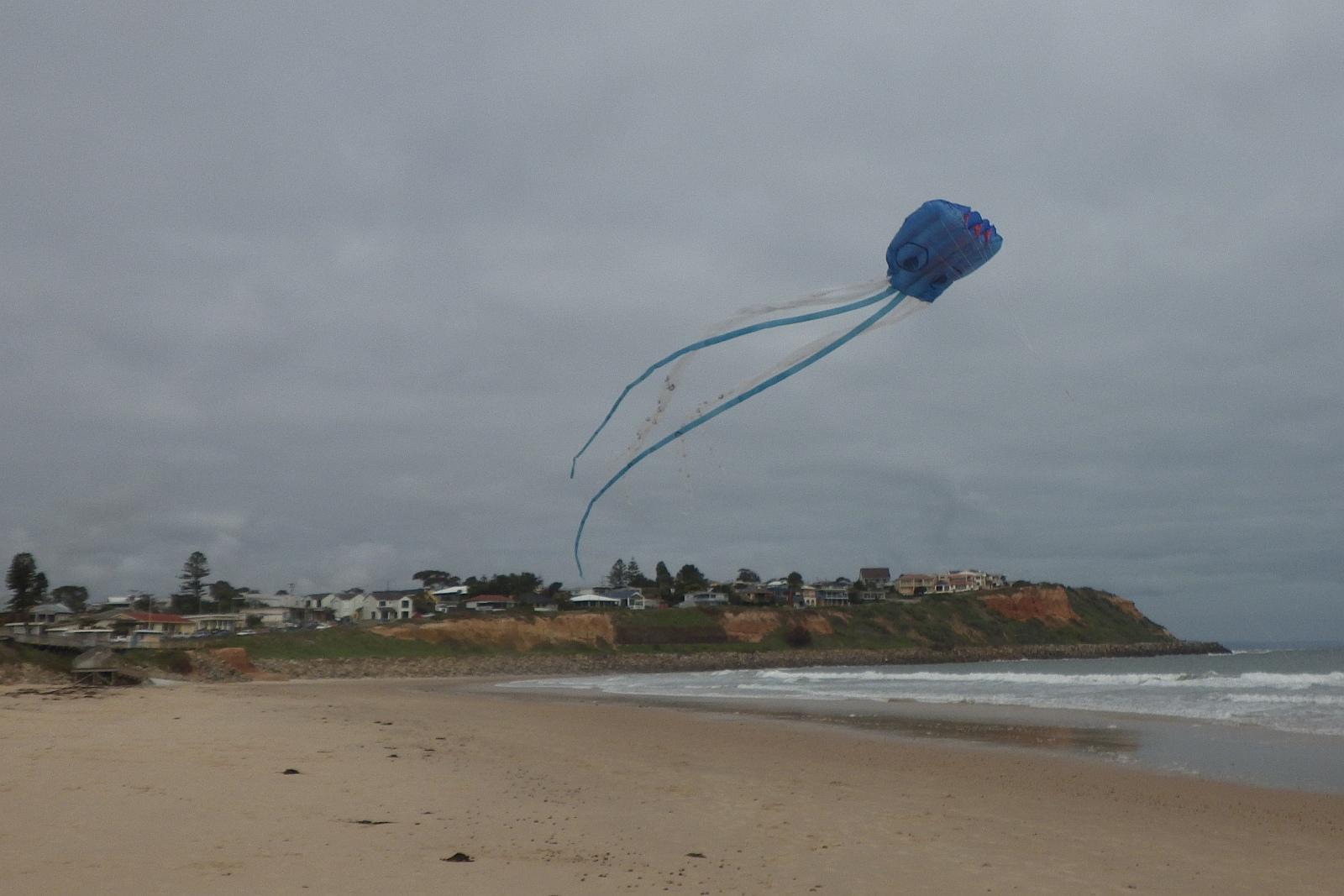 MBK Octopus kite 1 - 4.