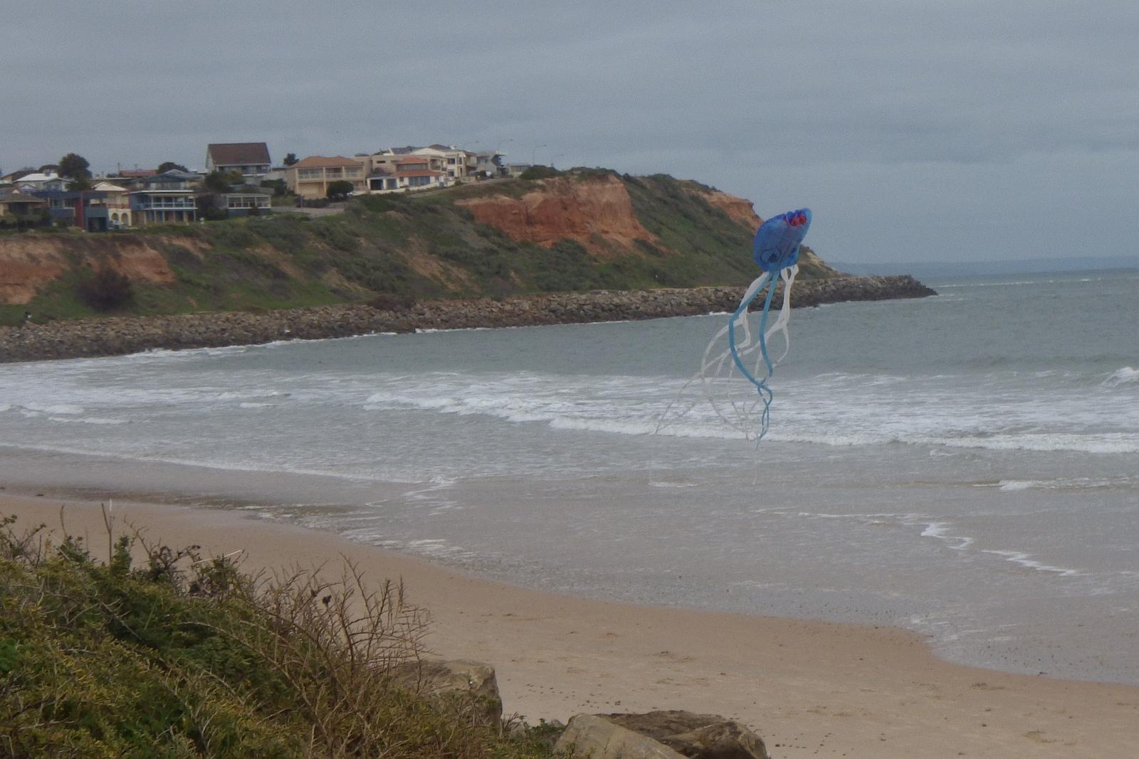 MBK Octopus kite 1 - 5.
