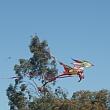 Murray Bridge Kite Festival 2016 - Dragon kite, yellow body.