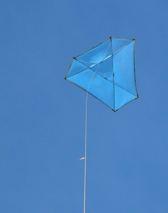 Flight Report Multi Dowel Barn Door Kite Rough As Guts