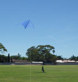 The huge MBK Multi-Dowel Barn Door kite in flight.