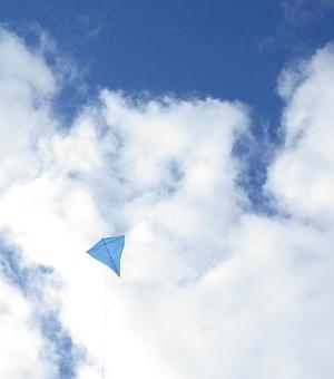 MBK Multi-Dowel Diamond kite.