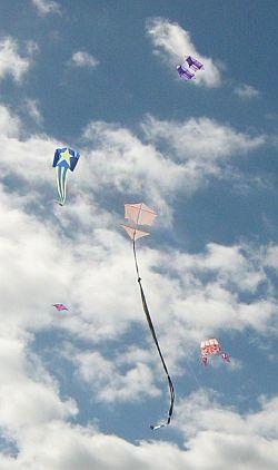 1-Skewer Roller Kite