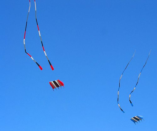 2 matching single-line parafoil kites at a festival.