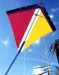The Peter Powell Stunt Kite Classic Steerable Psuedo