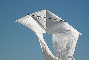 Pictures Of Kites - a guge white Delta we saw at a festival.