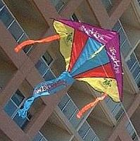 A typical retail Delta kite, with a ripstop nylon sail.