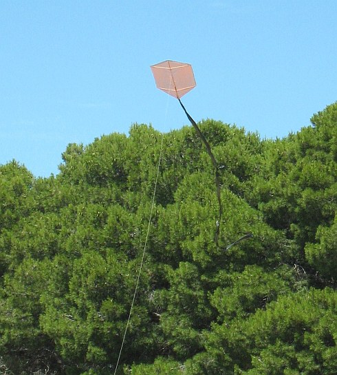 The 1-Skewer Rokkaku in flight.
