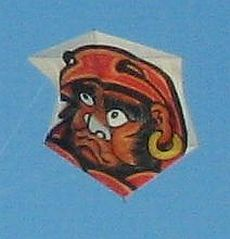 Rokkaku Kites - featuring Japanese character with white nose