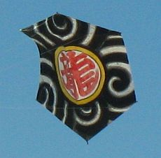Rokkaku Kites - distinctly Asian design on this one.