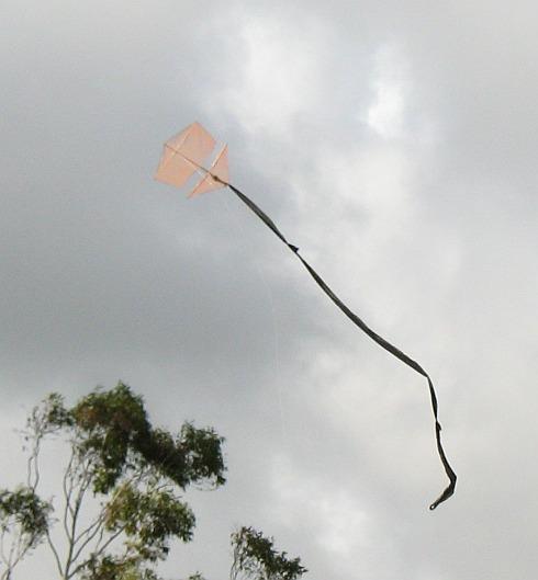 The 1-Skewer Roller in flight.
