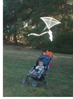 Kite Flying Log - intensely sun-lit clear plastic 1-Skewer Diamond kite.