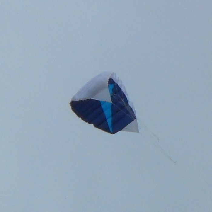 Soft 2-line stunt kite.