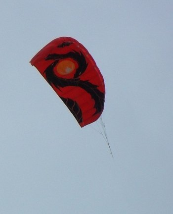 A dual line 'soft' stunt kite in action at a kite festival.