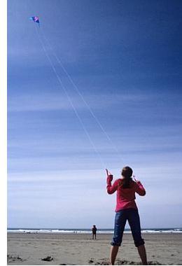 Stunt Kites Delta Diamond Parafoil Or Quad