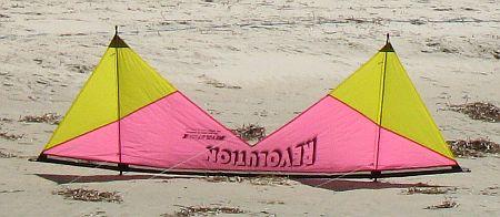 Stunt kites - quad kite