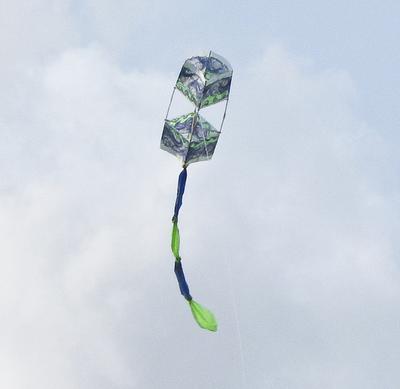 flying well