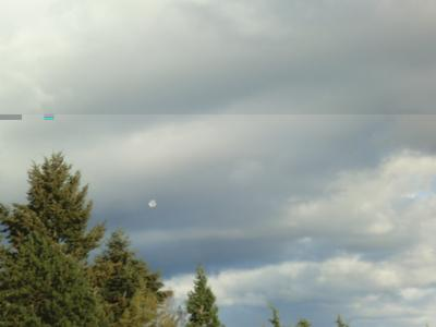 Here's the kite about 15 seconds after it broke loose.