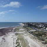 A nice view of the brown seaweed, white sand and a few seaside buildings near Fort Glanville, Semaphore.