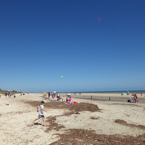 People at the AKFA Try Kite Flying Day at Semaphore, South Australia.