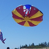 This very large UFO kite has flown at many Adelaide Kite festival events.