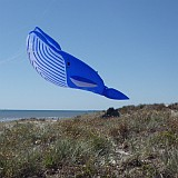 This Whale flies better when suspended from another kite's line