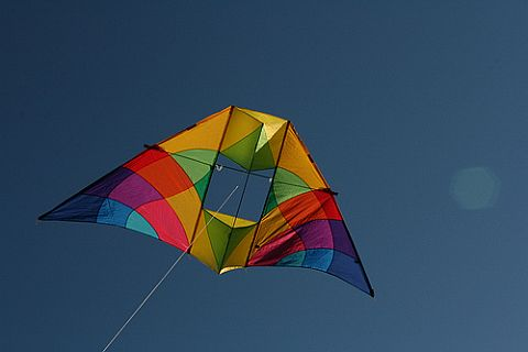 Triangular box kites are often paired with Delta wings, like this impressive, colorful Delta Conyne.
